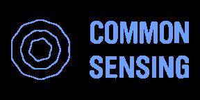 commonsensing-logo_color@2x